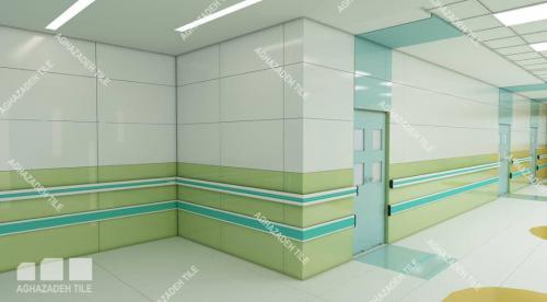 دستگیره دیواری بیمارستانی و ضربه گیر آنتی باکتریال بیمارستانی در انواع رنگها