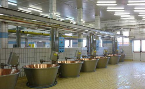 سرامیک ضد اسید کف صنعتی